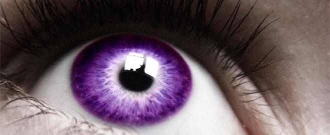 purpleiriswide.jpg